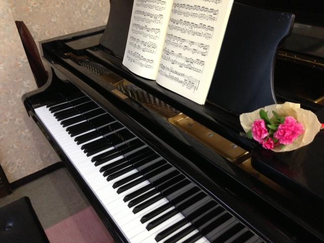 夏のトライアルレッスン | マドリッド音楽教室